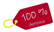 Formation Team Building 100% Antenna